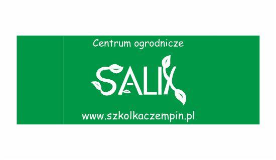kafelek SALIX 2